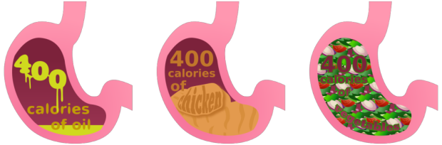Stomach-Graphic-copy-1024x337